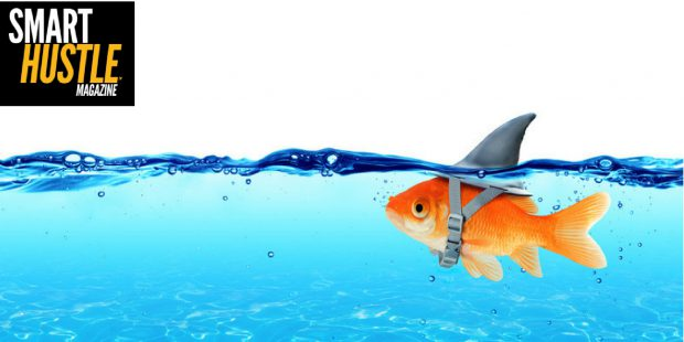 The Blowfish Effect: How to Make Your Small Business Look Like a Big One